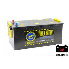 Аккумуляторы Тюмень стандарт 225Ah 1500A (EN)